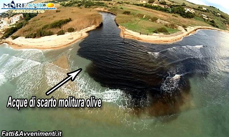 molitura-olive-chiazza-mare-depuratori