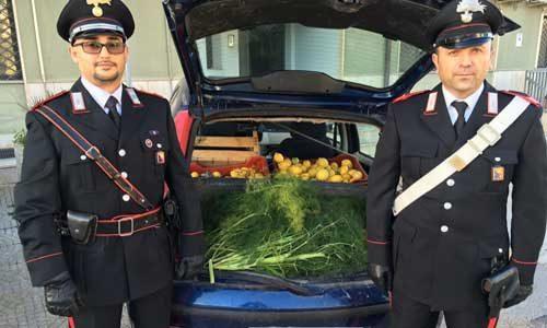 Due uomini arrestati dai carabinieri per furto di limoni