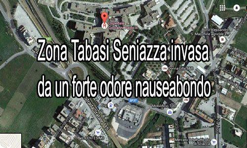 """Contrada Tabasi Seniazza: il solito """"fetore"""" nauseabondo di ogni anno"""