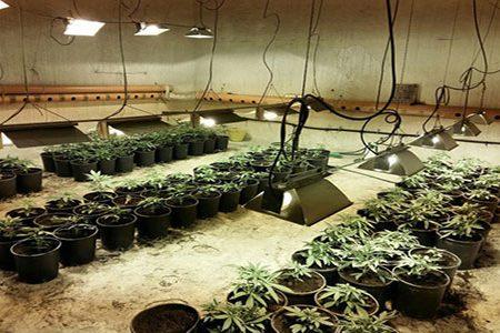 Scoperto un sofisticato sistema per coltivare cannabis:  arrestato un 38enne