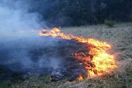 Prevenzione Incendi. Gruppo di Protezione Civile collabora con il WWF per il controllo della riserva di Torre Salsa