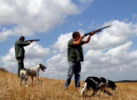 Ribera. Cacciatore di Vicenza con strumenti irregolari uccide 100 uccelli di specie protette: denunciato