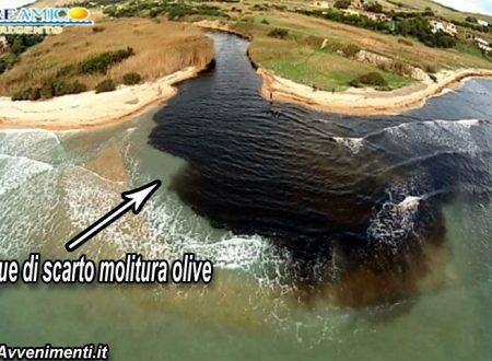 Inquinamento.Reflui illegali molitura olive scaricati nelle fogne mandano in tilt i depuratori