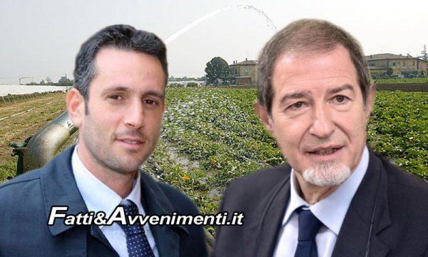 """Ribera. Campagna irrigua 2018, Sindaco Pace scrive al Governatore Musumeci: """"Dichiari lo stato d'emergenza"""""""
