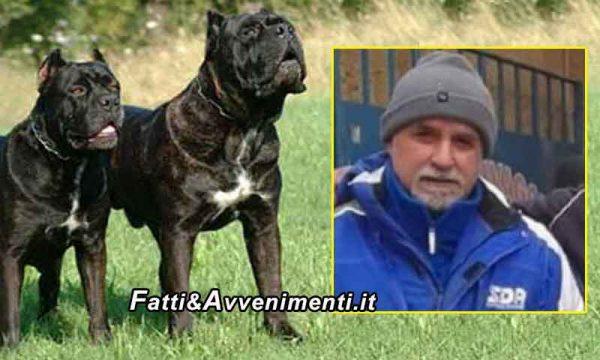 L'autopsia sul corriere sbranato dai tre cani conferma  la morte per dissanguamento: si attende l'esame istologico