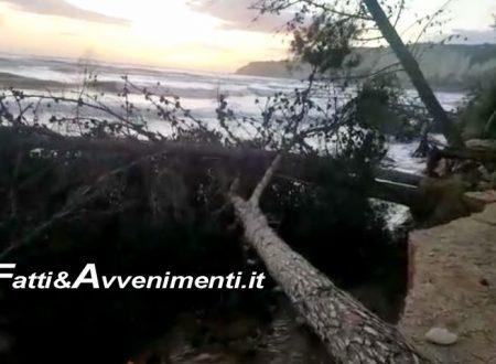 Spiaggia di Eraclea Minoa inghiottita dal mare, ieri oltre 10 metri spazzati via: allarme di MareAmico