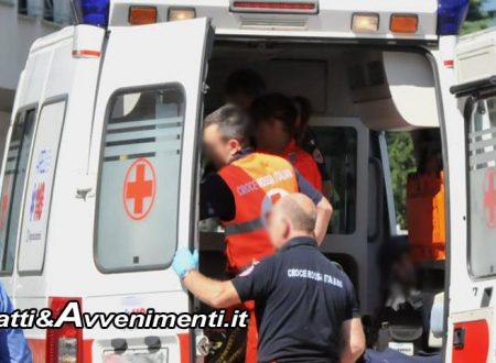 Terrasini. 40Enne cade da un albero di carrube e sbatte la testa: è in gravi condizioni