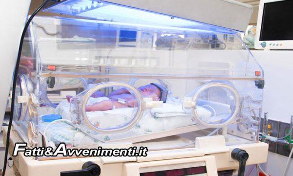 Sciacca. L'associazione Orazio Capurro dona un'incubatrice alla Pediatria del Giovanni Paolo II