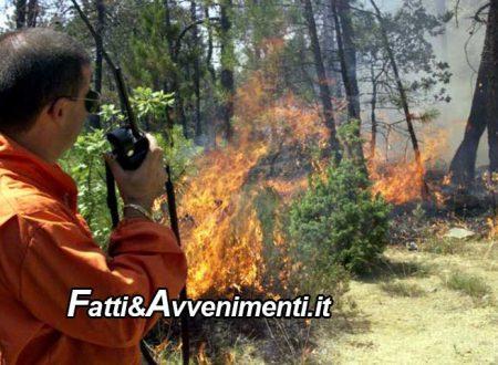 Ribera. Trafficante (Unsic): bene il servizio antincendio con l`impiego di 800 forestali