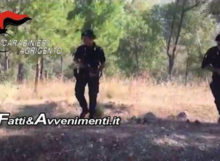 Ravanusa. Evaso per un mese viene arrestato in un bosco: portato in carcere dai carabinieri