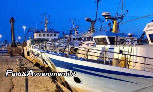 """Sicilia, dichiarato stato di crisi della Pesca. UGL e Fedagripesca: """"E' la risposta che aspettavamo"""""""