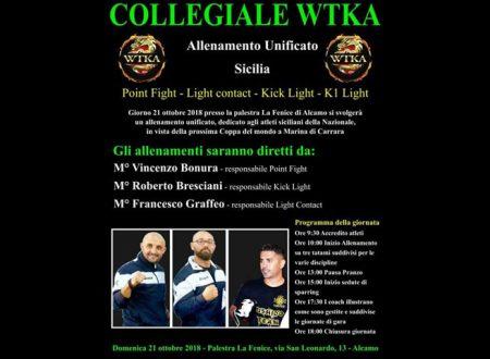 Alcamo. Domenica collegiale WTKA di arti marziali: Presente anche il coach saccense della Nazionale Graffeo