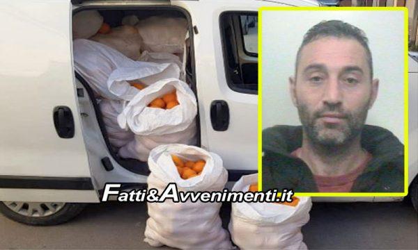 Paternò (CT). Beccati due ladri di agrumi: recuperate 2 tonnellate di arance