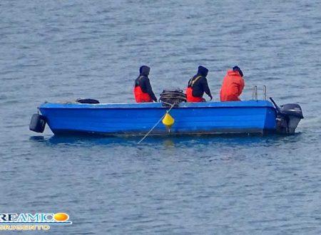 Novellame. Mare dell'agrigentino depredato: continua la pesca incessante nonostante i controlli