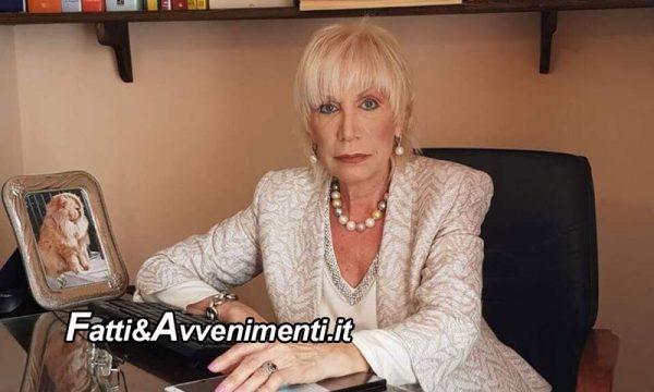 """Sicilia. Randagismo, Rivoluzione Animalista dichiara """"guerra"""" a tutti i comuni: """"non rispettate la legge"""""""
