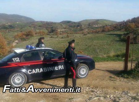 Chiaramonte Gulfi (RG). Carabinieri di giorno e ladri di ortaggi di notte: 2 arrestati dai colleghi dell'Arma