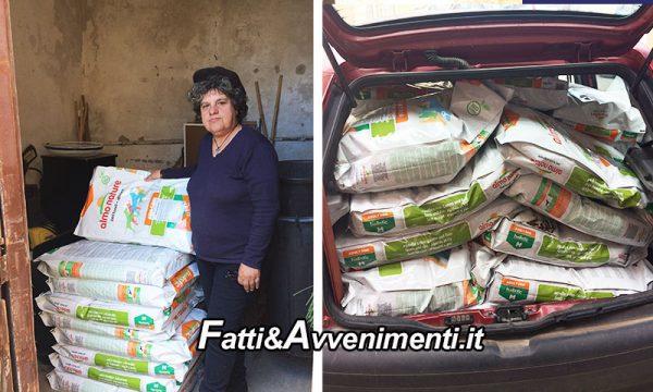 Sciacca, Randagi. Fondazione Capellino dona 500kg di croccantini alla Amici Animali Onlus