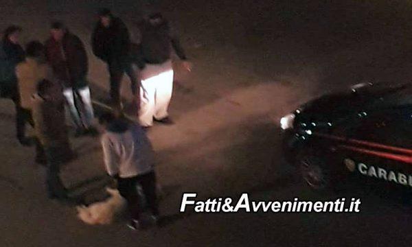 Castelvetrano. 20enne prende a calci il suo cane in strada: fermato dai passanti e denunciato dai carabinieri
