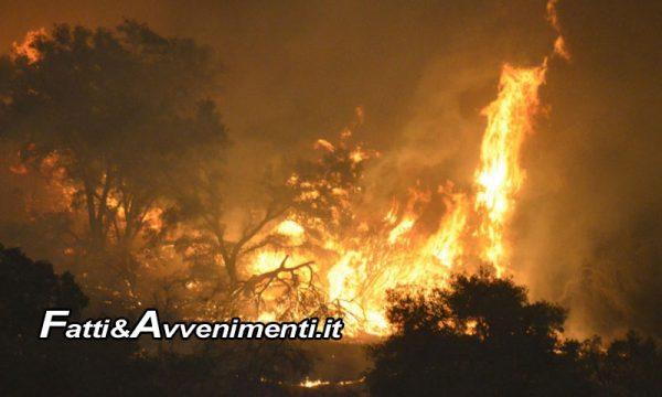 Messina. Bruciano sterpaglie dopo pulizia terreni e bosco prende fuoco: 3 denunciati per incedio colposo in concorso