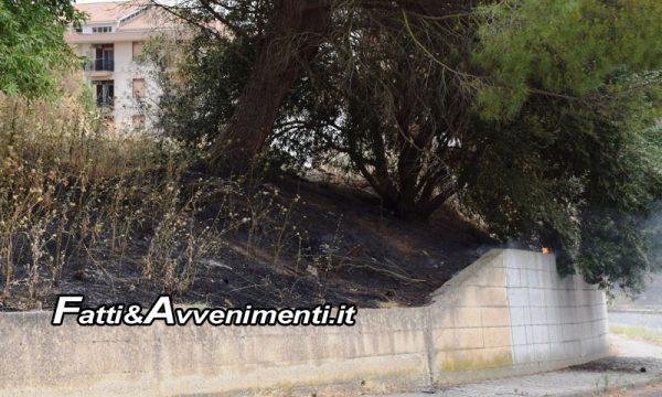"""Caltanissetta. 70enne dà fuoco alle sterpaglie sul marciapiede: """"Non potevo più usarlo"""", Arrestato dalla Polizia"""