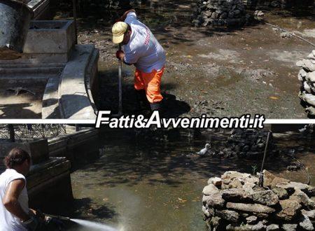 Sciacca. Villa Comunale, Brunetto corre ai ripari e riempe la vasca d'acqua: Oche e tartarughe salve