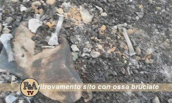 Sciacca. Trovata fossa comune con ossa bruciate, forse di cani: sul posto la polizia che ha avviato le indagini