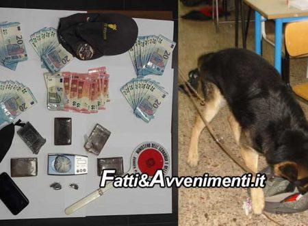 Agrigento. Cani antidroga Eschilo e Tasko, beccano extracomunitario con mezzo chilo di hashish e marjuana