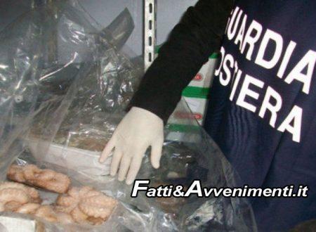 Agrigento. Controlli ittici: Guardia Costiera sequestra 150 kg di pesce ed eleva oltre 9mila euro di multe