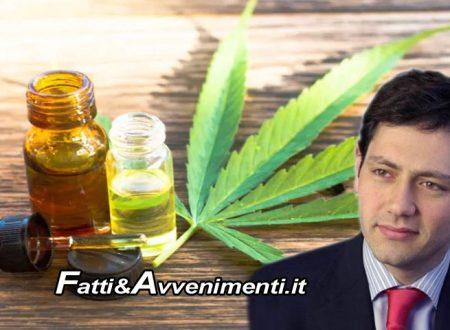 Sicilia. Sì a cannabis terapeutica, ma solo per dolore cronico, neuropatico e spasticità da SLA