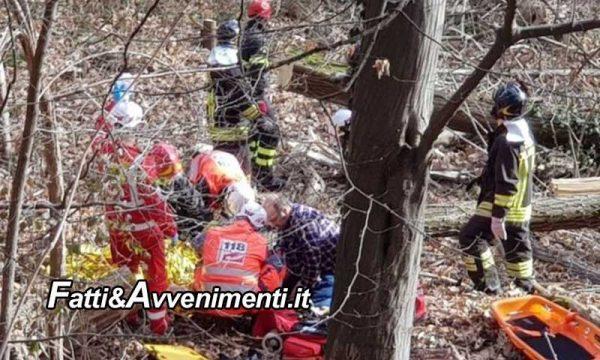 Campobello di Licata. Muore travolto da un albero che gli cade addosso: inutile l'intervento dei vigili del fuoco