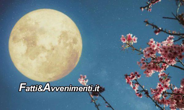 Stasera spettacolare Superluna dei fiori 2020: un appuntamento da non perdere
