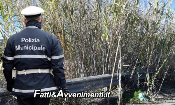 """Sciacca. Ordinanza sindacale """"terreni incolti a rischio incendi zona S. Marco"""": Vanno puliti entro 5 giorni"""