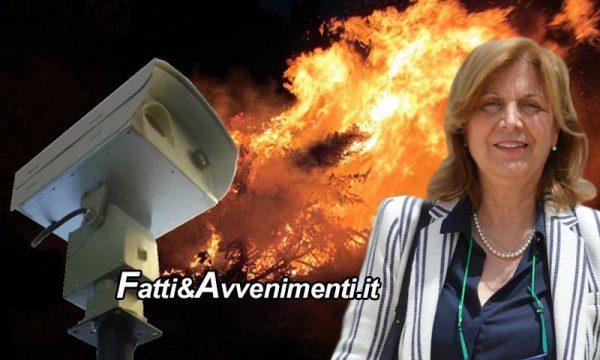 """Sicilia. ARS, Prevenzione incendi: in arrivo telecamere ad infrarossi che """"vedono"""" il rialzo della temperatura"""