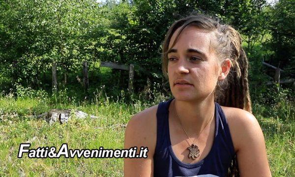 Carola Rackete arrestata in Germania: protestava per  impedire l'abbattimento di alberi centenari