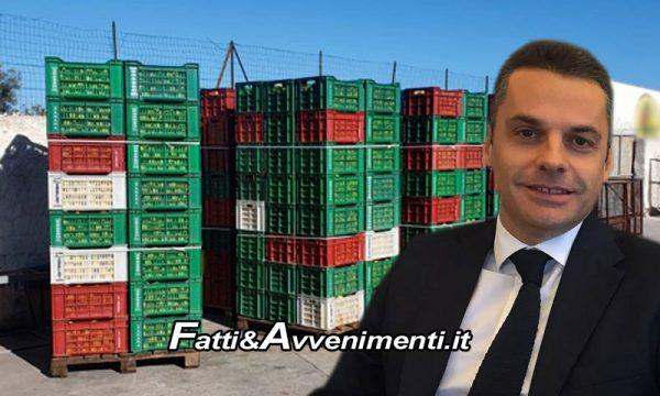 """Avola (Sr). Maxi-sequestro di 22mila kg di limoni spagnoli, Bandiera: """"Attentato a salute ed economia Sicilia"""""""