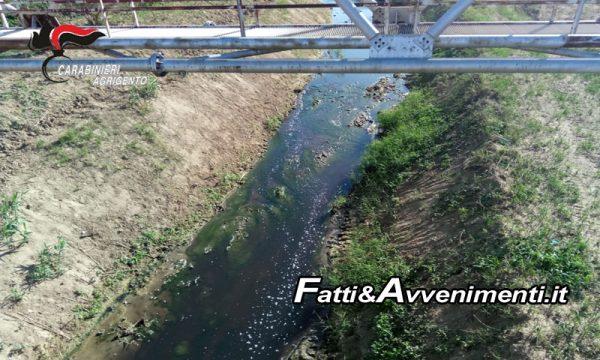Agrigento. Carabinieri chiudono opificio e scoprono depuratore Favara guasto: fiume Naro si tinge di nero