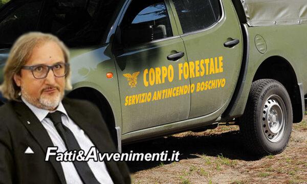 """Sicilia. Forestali, Ugl: """"riforma rischia di incagliarsi, ci appelliamo al senso di responsabilità"""""""