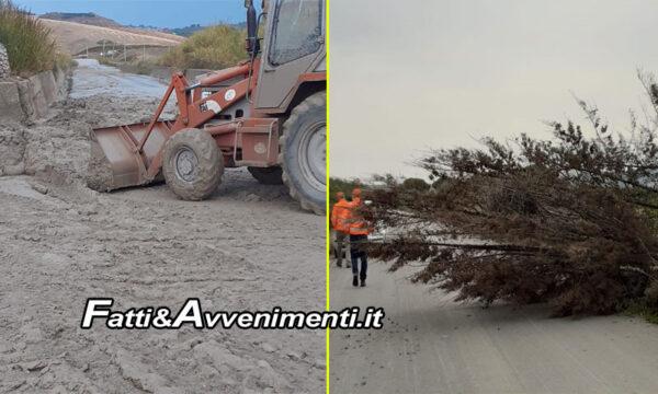 Maltempo in Provincia Agrigento. Strade invase dal fango e alberi abbattuti: numerosi interventi su strade provinciali